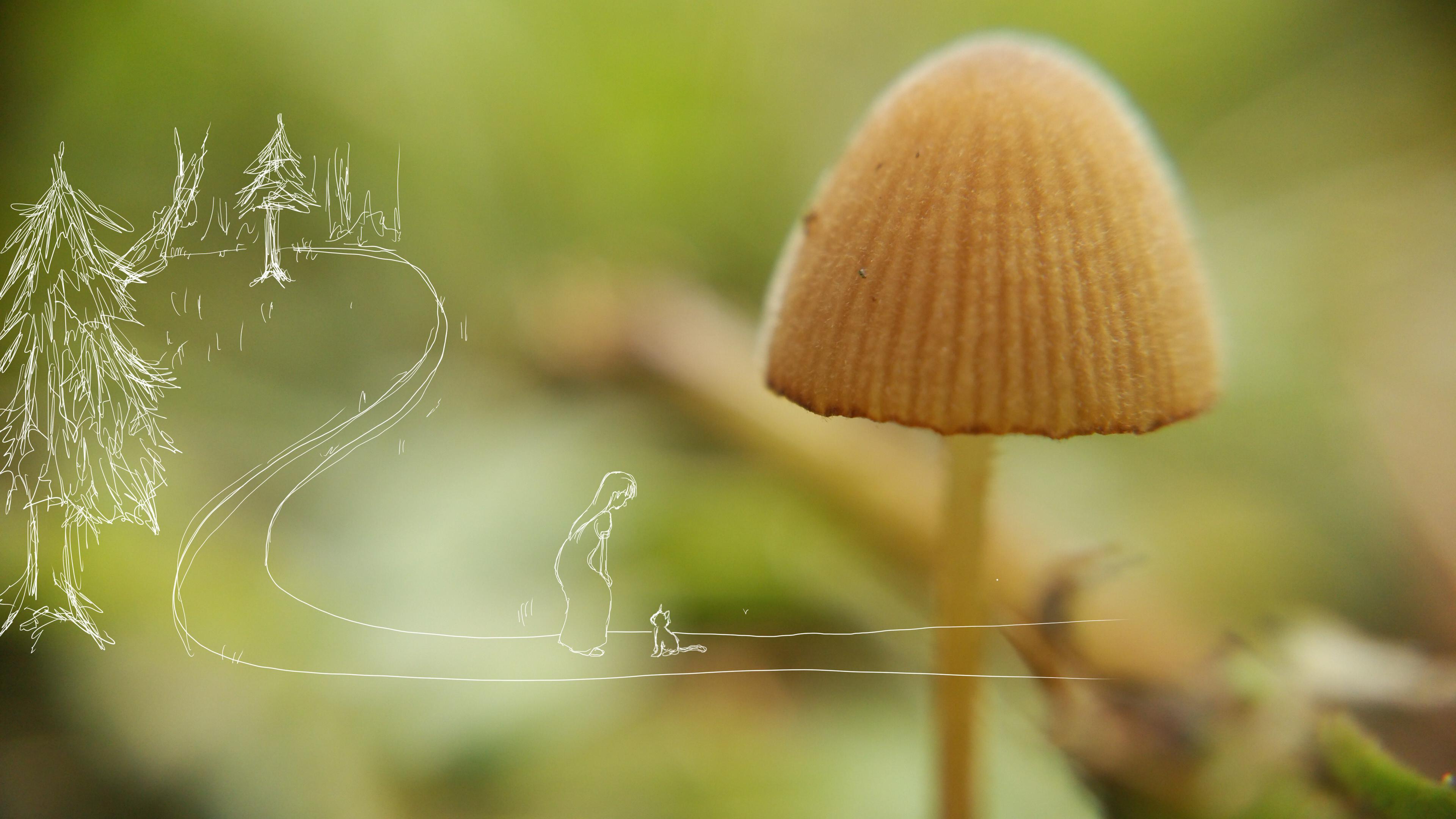 【1】迷い森の出口にて